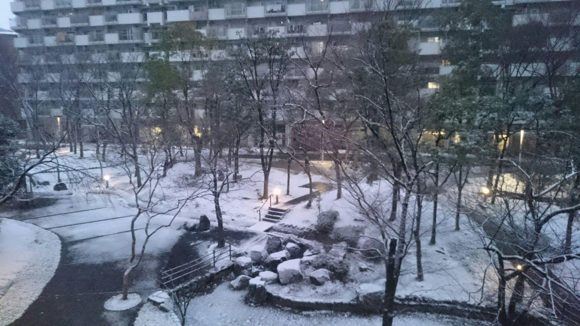 京都も雪!